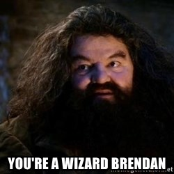 Yer A Wizard Harry Hagrid - You're a wizard brendan