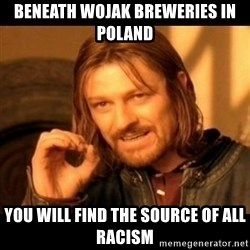 Does not simply walk into mordor Boromir  - beneath wojak breweries in poland you will find the source of all racism