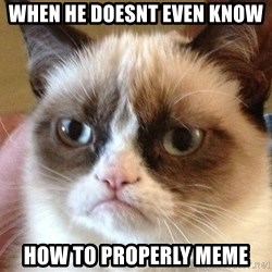 Angry Cat Meme - When he doesnt even know How to properly meme