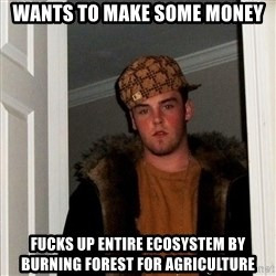 Scumbag Steve - wants to make some money Fucks up entire ecosystem by burning forest for agriculture
