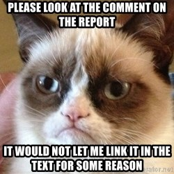 Angry Cat Meme - Please look at the comment on the report It would not let me link it in the text for some reason