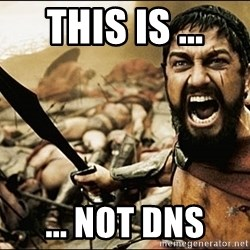 This Is Sparta Meme - THIS IS ... ... not DNS