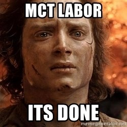 Frodo  - MCT LAbor Its done