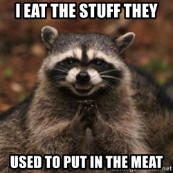 evil raccoon - i eat the stuff they used to put in the meat
