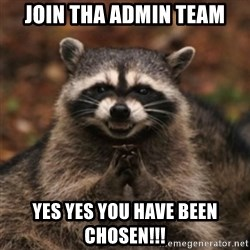 evil raccoon - join tha admin team yes yes you have been chosen!!!