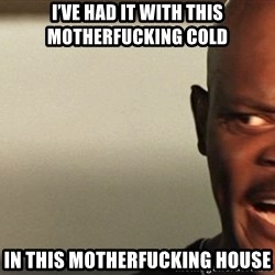 Snakes on a plane Samuel L Jackson - I've had it with this motherfucking cold  In this motherfucking house