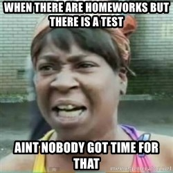 Sweet Brown Meme - When there are homeworks but there is a test  aint nobody got time for that