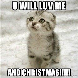 Can haz cat - U Will Luv Me And Christmas!!!!!