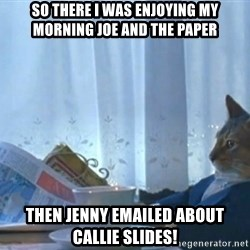 newspaper cat realization - So there I was enjoying my morning joe and the paper Then Jenny emailed about Callie Slides!