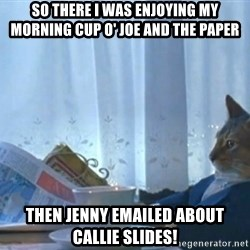 newspaper cat realization - So there i was enjoying my morning cup o' joe and the paper then Jenny emailed about callie slides!