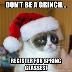 Grumpy Cat Santa Hat - Don't be a grinch... register for spring classes!