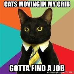 Business Cat - Cats moving in my crib Gotta find a job