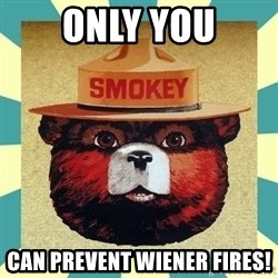 Smokey the Bear - only you Can prevent Wiener fires!