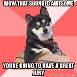 Cool Dog - Wow That sounded Awesome Youre Going to have a great jury