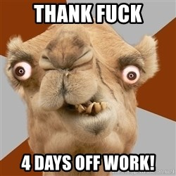 Crazy Camel lol - Thank fuck 4 Days Off work!