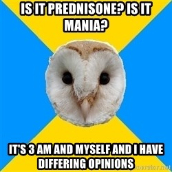 Bipolar Owl - Is it Prednisone? Is it mania? It's 3 am and myself and I have differing opinions