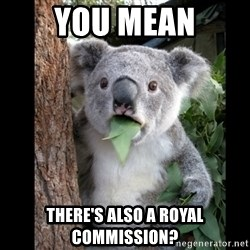 Koala can't believe it - You mean There's also a royal commission?