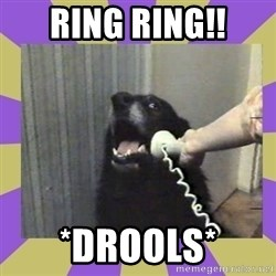 Yes, this is dog! - Ring ring!! *drools*