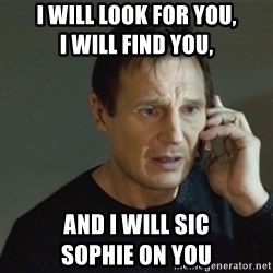 taken meme - I will look for you,                    I will find you, AND I WILL SIC                           SOPHIE ON YOU