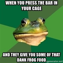 Foul Bachelor Frog - WHEN YOU PRESS THE BAR IN YOUR CAGE and they give you some of that dank frog food