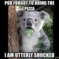Koala can't believe it - pod forgot to bring the pizza i am utterly shocked