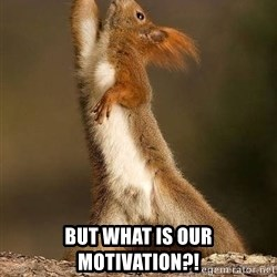 dramatic squirrel - But what is our motivation?!
