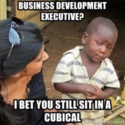 Skeptical 3rd World Kid - Business Development Executive? I bet you still sit in a cubical