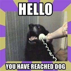 Yes, this is dog! - hello you have reached dog