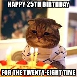 Birthday Cat - happy 25th birthday for the twenty-eight time