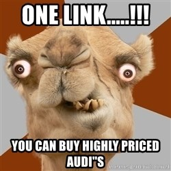 Crazy Camel lol - One Link.....!!! you can buy highly priced Audi''s