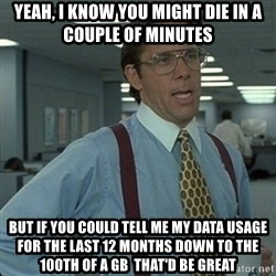 Yeah that'd be great... - Yeah, I know you might die in a couple of minutes but if you could tell me my data usage for the last 12 months down to the 100th of a GB  that'd be great