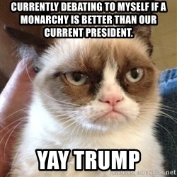 Grumpy Cat 2 - Currently debating to myself if a monarchy is better than our current president.   YAY TRUMP