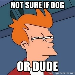 Futurama Fry - Not sure if dog Or Dude
