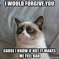 Grumpy cat good - i would forgive you  cause i know if not it makes me feel bad