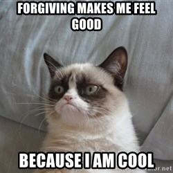 Grumpy cat good - forgiving makes me feel good because i am cool