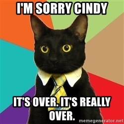 Business Cat - i'm sorry cindy it's over. it's really over.