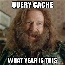 What Year - query cache what year is this