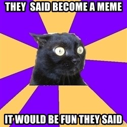 Anxiety Cat - they  said become a meme it would be fun they said