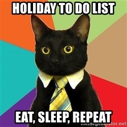 Business Cat - holiday to do list  eat, sleep, repeat