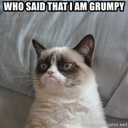 Grumpy cat good - Who said that I am grumpy