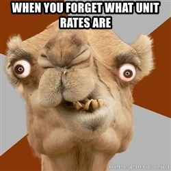 Crazy Camel lol - When you forget what unit rates are