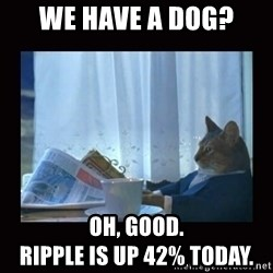 i should buy a boat cat - We have a dog? Oh, good.                                Ripple is up 42% today.