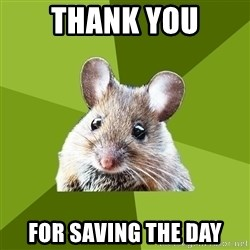 Prospective Museum Professional Mouse - Thank you For saving the Day