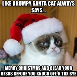 Grumpy Cat Santa Hat - Like Grumpy Santa Cat always says... Merry Christmas and clean your desks before you knock off. K thx bye