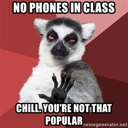 Chill Out Lemur - no phones in class chill. you're not that popular