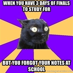 Anxiety Cat - When you have 3 days of finals to study for But you forgot your notes at school