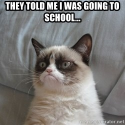 Grumpy cat good - They told me i was going to school...