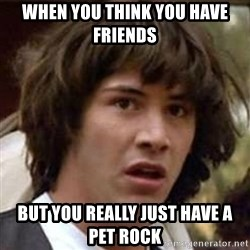 Conspiracy Keanu - When you think you have friends But you really just have a pet rock