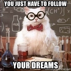 Chemistry Cat - You just have to follow Your dreams