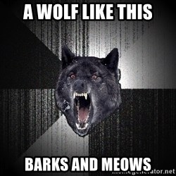 Insanity Wolf - a wolf like this barks and meows